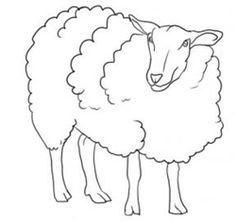 How To Draw Sheep Lambs Drawing Tutorials