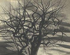 Léon Spilliaert : Bomen, wit en zwart
