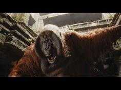 "The Jungle Book ""Full'Movie"""