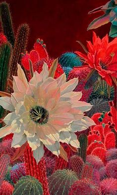 Floral Painting:  Sharon Weiser