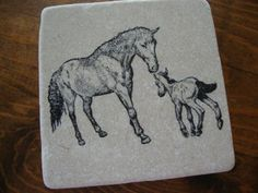 Personalized Nature and Animal Coasters - Single Coaster