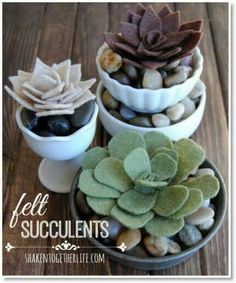 Felt succulent plants maybe w/ $ store cups and stones?