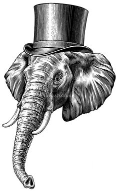 Scratchboard  Illustrations; Find Scratchboard style Illustrators and Artists