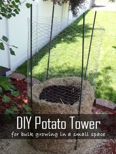 DIY Potato Tower| 20 Garden Tips And Hacks That Will Help You Become a Gardening Expert | Pioneer Settler