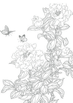 Peony and Butterflies Coloring Page Emoji Coloring Pages, Monster Coloring Pages, Colouring Pages, Coloring Books, Butterfly Coloring Page, Butterfly Drawing, Flower Coloring Pages, Chinese Picture, Chinese Artwork