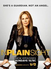 In Plain Sight is actually a really good show, I watch it on netflix all the time!