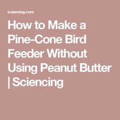 How to Make a Pine-Cone Bird Feeder Without Using Peanut Butter | Sciencing