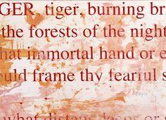 Tiger, tiger  (04)