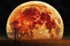 Extra Super Lune : Plus tôt ce mois-ci, nous avons fait l'expérience d'une pleine Lune en Bélier du 15 au 16 Octobre, et selon l'endroit où vous étiez à ce