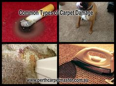 Cleaning and maintaining carpet is very important as after using for long time they may get damaged. If the repairs aren't perfect, you can see them. Moreover, you can topple while walking over the damaged area. Perth Carpet Master the most efficient and skilled professionals in Perth. Recently they have launched innovative and quick technique for repairing burn carpet. Now Carpet burns caused by a cigarette or any type of damaged can be repaired with the help of Perth Carpet Master.