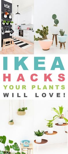 Indoor Gardening Ideas | DIY Inspiration for your apartment. By ...