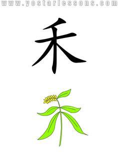 禾 = seedling. Shaped like a seedling. Detailed Chinese Lessons @ www.yostarlessons.com