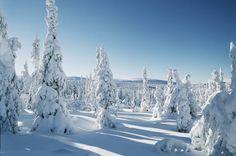 thisislove blog: Flytta till Kiruna