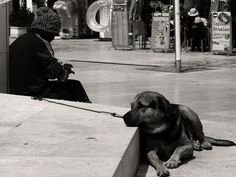 People in Albufeira, Portugal (true friend dog) - a photo by LMS76