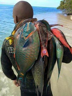 Jamaica fresh fish, just don't eat the parrot fish....they keep our reefs healthy.