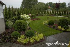Ogród mały, ale pojemny;) - strona 70 - Forum ogrodnicze - Ogrodowisko