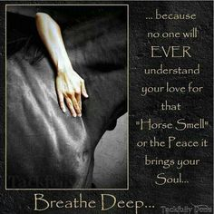 My Horse heals me in a way you will never understand. Cowgirl And Horse, My Horse, Horse Love, Horse Girl, Horse Riding, Cowgirl Quote, Cowboy Hats, Horse Barns, Equine Quotes