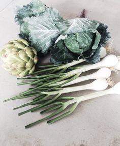 vegetables Cabbage, Colours, Vegetables, Food, Essen, Cabbages, Vegetable Recipes, Meals, Yemek