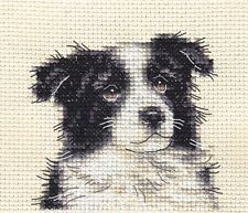 BORDER COLLIE PUPPY ~ DOG ~ Full counted cross stitch kit with all materials