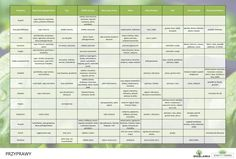 jakie-przyprawy-i-ziola-do-czego Cooking Recipes, Healthy Recipes, Periodic Table, Food, Salad, Content, Tables, Diet, Periodic Table Chart