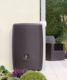 baril r cup rateur d 39 eau en bois. Black Bedroom Furniture Sets. Home Design Ideas