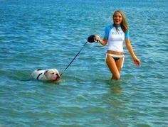 Heatstrokes   BaggyBulldogs