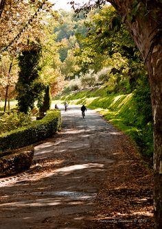 Autumn park of Menerbes, Provence | by © Sandrine Burke