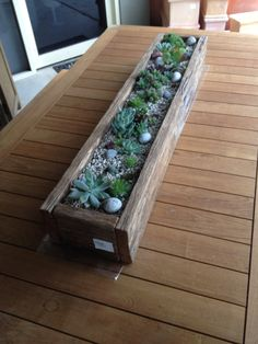Succulent planter box. Really want this! Succulent Centerpieces, Succulent Arrangements, Succulent Terrarium, Planting Succulents, Planting Flowers, Terrariums, Indoor Garden, Indoor Plants, Planter Boxes