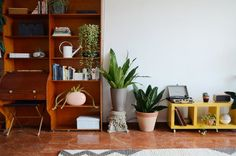 House Tour: A Plant-Packed Apartment in Puerto Rico | Apartment Therapy