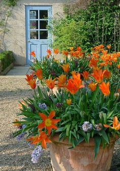 Pastel, springy colors are great -- but after a long white winter, there's nothing like a jolt of radiant red, eye-catching orange, or screaming yellow.