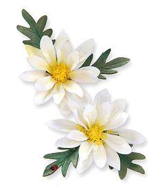 Look at this #zulilyfind! Susan Tierney-Cockburn Mini Daisy Thinlits Die Set by Sizzix #zulilyfinds