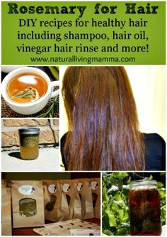Rosemary Recipes for Hair Care – Hair Oil, Shampoo, and Rinse with Rosemary