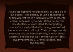 "Antibiotics destroysl healthy microbe life in our bodies.  ... Using antibiotics is setting a forest fire in a lush rain forest in order to control certain nasty weeds.  When our normal intestinal bacteria are killed, those ""parking spaces"" are easily filled with the aggressive bad bacteria, viruses and fungi.  Their garbage quickly over-runs into our intestinal walls, into our bloodstreams, and into our liver, setting way for 'leaky gut' syndrome (IBS, Crohn's, diverticulitis - and cancer )"
