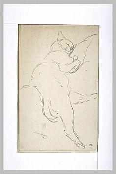 Théophile Alexandre STEINLEN - Etude de chat dormant sur le côté, la tête sur un coussin (4e quart 19e siècle; 1er quart 20e siècle)
