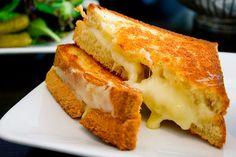 cheddar sandwich with fresh onion