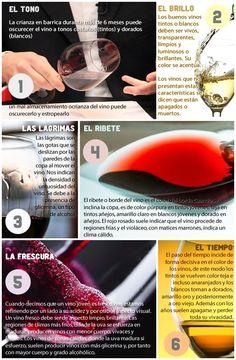 En el siguiente gráfico podrás reconocer de manera rápida seis importantes claves visuales que cualquier buen vino debe ofrecer