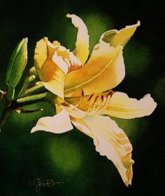 Contemporary Realism: Yellow Day Lily