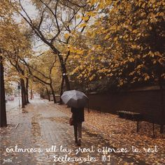 """""""...calmness will lay great offenses to rest."""" Ecclesiastes 10:4  #InstaEncouragements #instagood #wisdomwords #photooftheday #instadaily #christianity #bible #gospel #grace #mercy #faith #hope #love #bethelight #testify #redeemed #WisdomWednesday"""