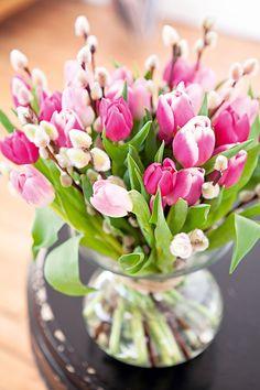 Doux camaïeu de tulipes roses et de chatons  ©Virginie Perocheau