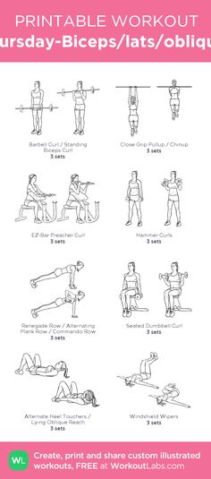 Thursday-Biceps/lats/obliques: my visual workout created at WorkoutLabs.com • Click through to customize…
