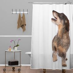 Wire-haired Dachshund Dog on white shower curtain. Bigger than life-size... For anyone who loves dogs but doesn't want the responsibility! #denydesigns #dogsonwhite #dachshund #petproducts #showercurtain #homedecor #dog #moderndesign #dogshowercurtain http://www.denydesigns.com/products/susan-goddard-wire-dachshund-on-white-shower-curtain