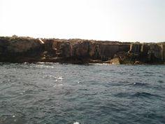 Favignana costa