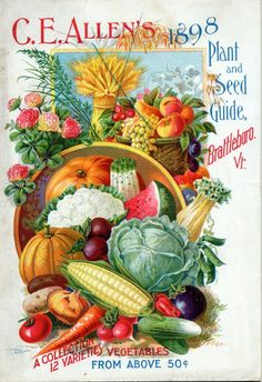 Early Rare Repro Art Vintage Garden Catalogs from Companies for Growing Vegetables, Flowers, Fruits and Blubs Approx. Posters Vintage, Images Vintage, Vintage Labels, Vintage Ephemera, Vintage Postcards, Vintage Prints, Vintage Art, Garden Catalogs, Seed Catalogs