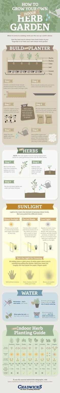 #HowTo Grow Your Own Indoor Herb Garden #Infographic