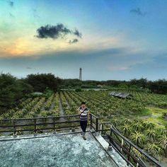 nyore. . . .   #bantul #explorebantul #wisatabantul  #dolanbantul #bantulprojotamansari #jelajahbantul #bantulhitz #viewjogja #photojogja #explorejogja #yogyakarta #jogjakarta by Jelajah Bantul