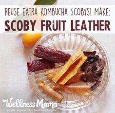 You can easily make this SCOBY fruit leather recipe in a dehydrator or oven and it is the perfect way to use up extra Kombucha SCOBYs. If you brew Kombucha, give these a try! #healthysnacks