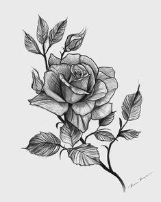 Lower Back Tattoos, Body Art Tattoos, Roses Drawing, Floral Back Tattoos, Rose Flower Tattoos, Flower Art Drawing, Tattoo Lettering, Japanese Tattoo Art, Rose Drawing Tattoo