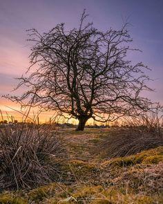 #tinahetlandphoto #longexposure #leefilters #Nature #AllNatureShots #NatureLover #NatureShot #animazing_nature #world_bestnature #whywelovenature #jaw_dropping_shots #wonderful_places #ilovescandinavia #Norway #norges_fotografer #southnorway2day #norway2d