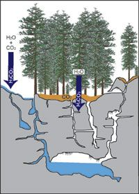 Rainwater mixes with carbon dioxide in the atmosphere and soils to form carbonic acid (H2CO3), which acts to dissolve away limestone.
