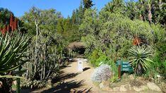 Stellenbosch University Botanical Garden - Free entry and has a restaurant.